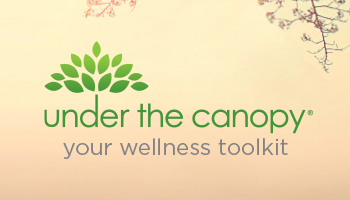 UNDER THE CANOPY – WHAT THIS MEANS FOR ME